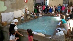Safareig de Balaguer (La Noguera)